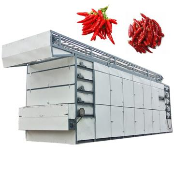 High Efficiency Energy Saving Continuous Chili Dewatering Mesh Belt Drying Machine
