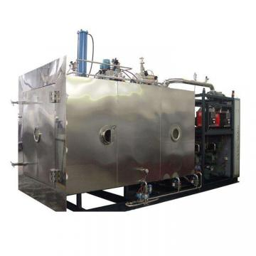 Industrial herbs seed flower blueberry vacuum freeze dryer machine for sale