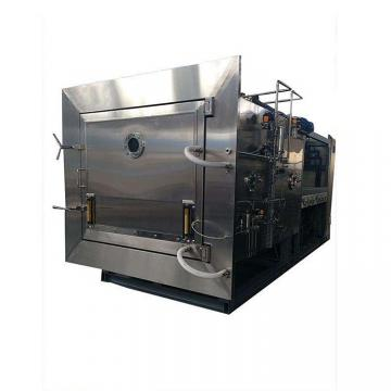 High quality bay leaf drying machine flower dryer machine