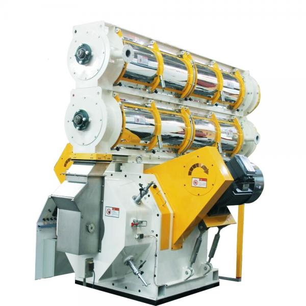 Small automatic chicken feed making machine animal feed pellet machine feed pellet mill for sale