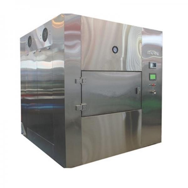 Lemon Slice Shrimp Microwave Vacuum Drying Equipment